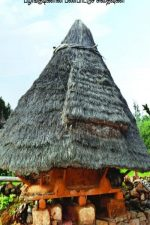 """This book, """"Malaivasam"""", reveals from field study that many of the advanced characteristics of tribal communities are declining."""
